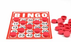 bingo-online-300x180